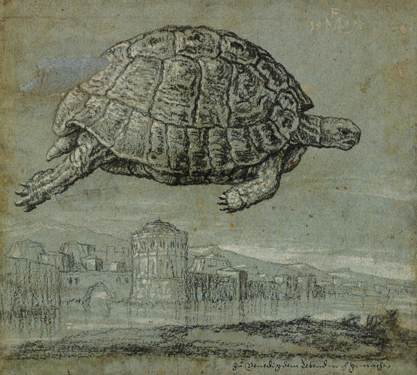 EXL1.2017.56 Lorck_Tortoise and view of a walled, coastal town_pdo3650.jpg